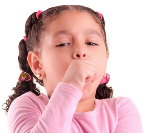 Коклюш у взрослых симптомы и лечение комаровский